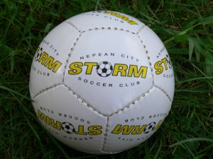 Nepean Storm 12-panel mini soccer ball