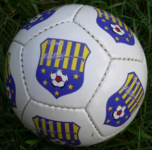 mini soccer balls are great promotional items that have a ton of uses and are lots of fun!